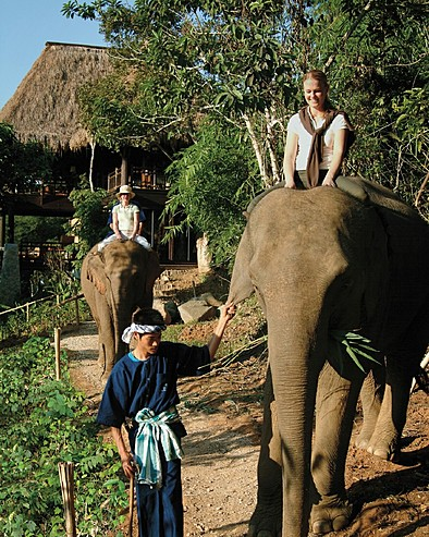 Four Seasons Tented Camp Golden Triangle, Thailand > Mahout training