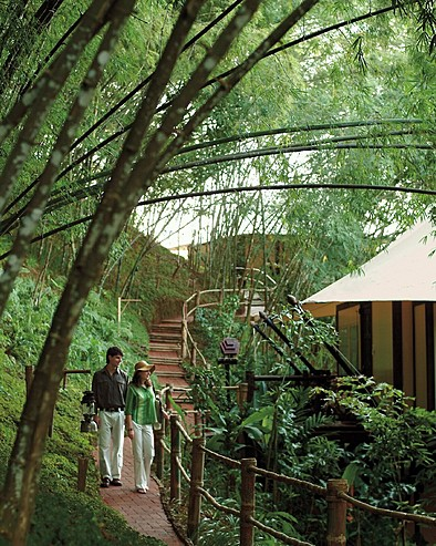 Four Seasons Tented Camp Golden Triangle, Thailand > Couple o­n jungle trail