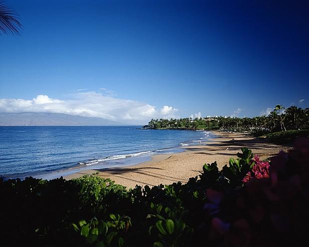 MAU 054 616x493 - Wailea Alanui , Hawaii , U.S.A