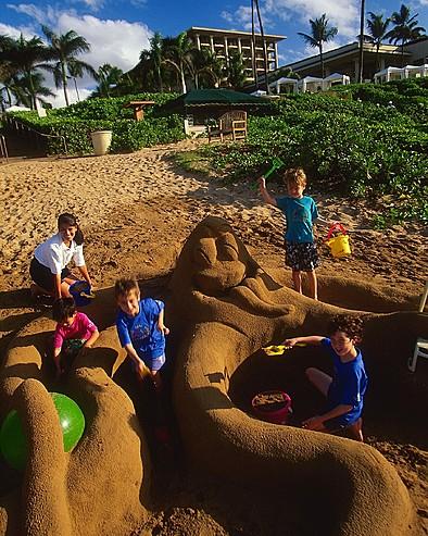 MAU 125 394x493 - Wailea Alanui , Hawaii , U.S.A